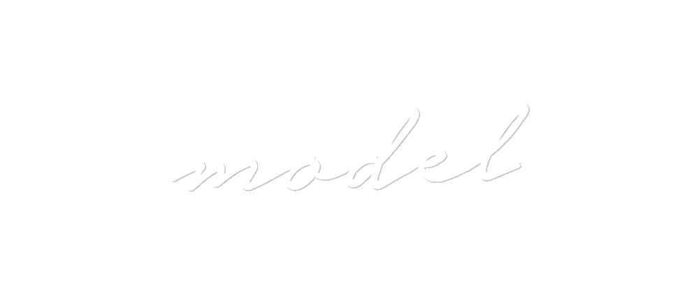 Slide 3 – Model
